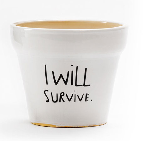 I Will Survive Plant Pot