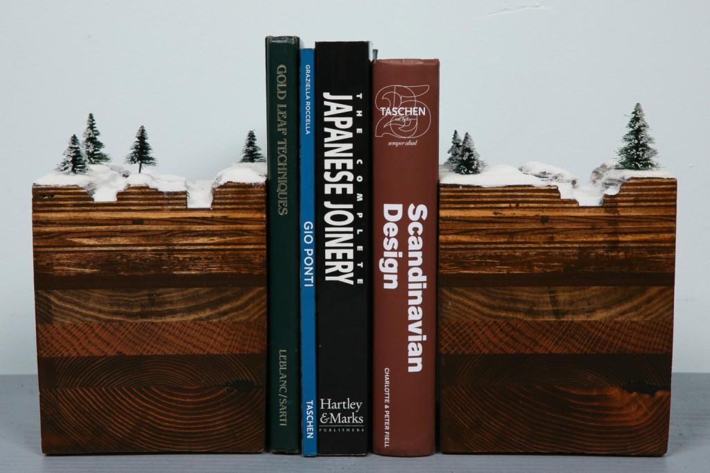 BookEnds of the Earth, Winter Series