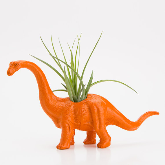 Dinosaur Planter with Air Plant Room Decor