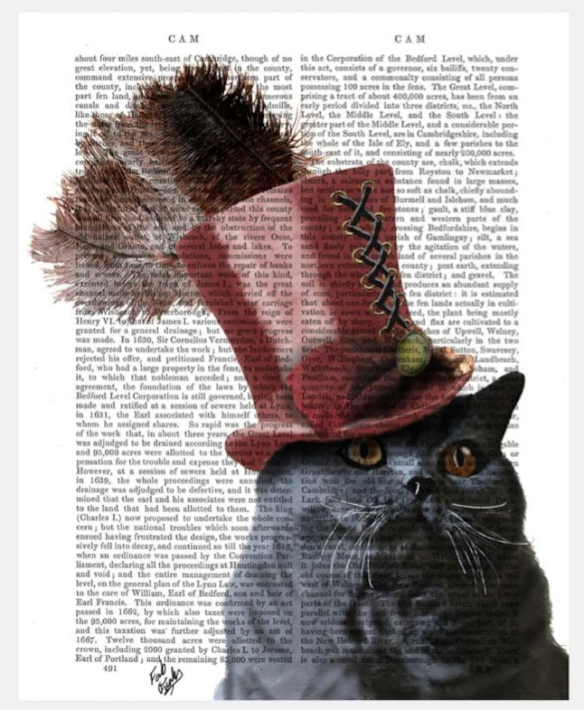 Grey Cat in The Hat