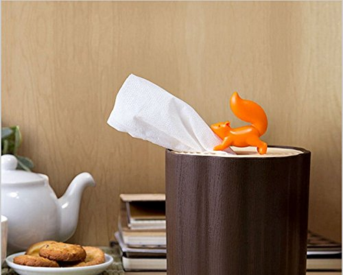 Squirrel Tissue Box