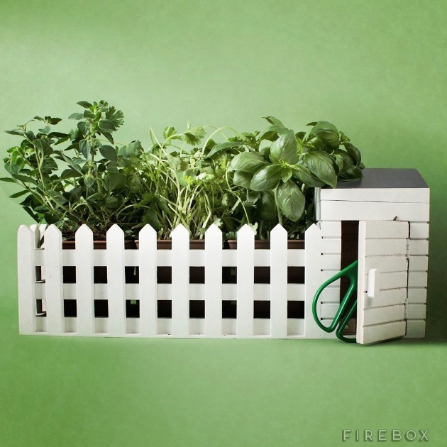 Indoor Allotment Herb Growing Kit