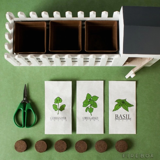 Herb Kits For Indoors: Indoor Allotment Herb Growing Kit