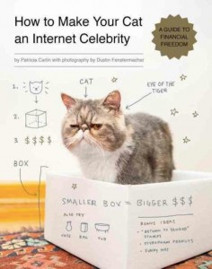 How to Make Your Cat an Internet Celebrity_Cover