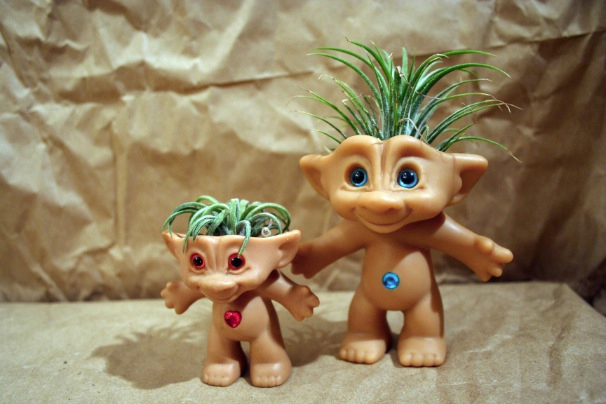 Treasure Troll Air Plant Pot with Plant