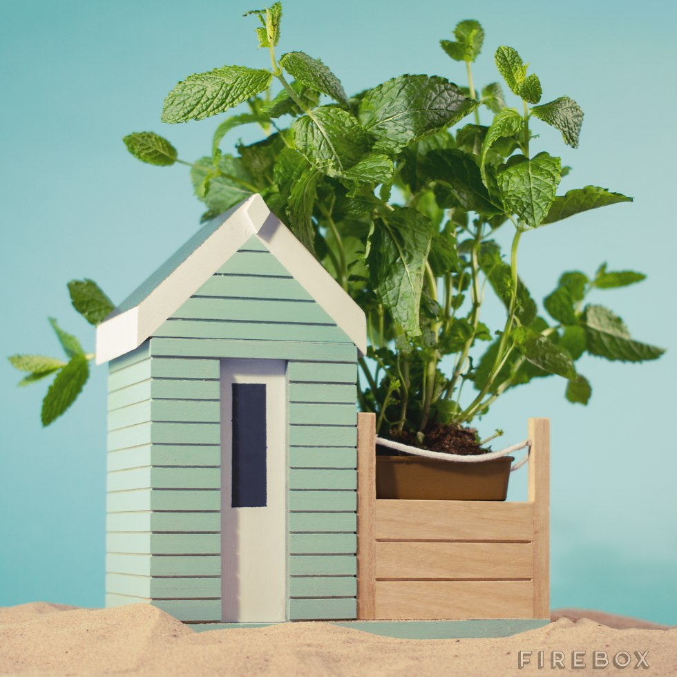 Indoor Beach Hut Planter