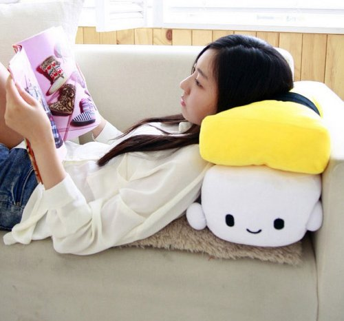 Sushi Cushion Pillow_