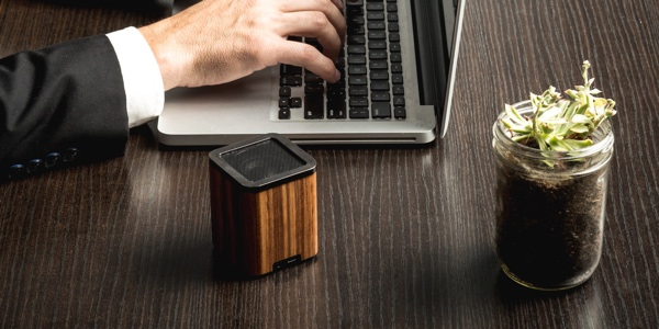 LSTN Satellite Zebra Wood Portable Bluetooth Speaker with Built-in Microphone