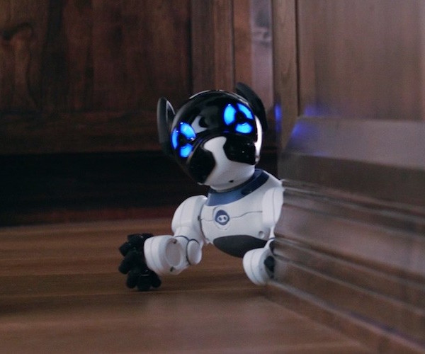 CHiPK9-----The-World---s-First-Lovable-Robot-Dog